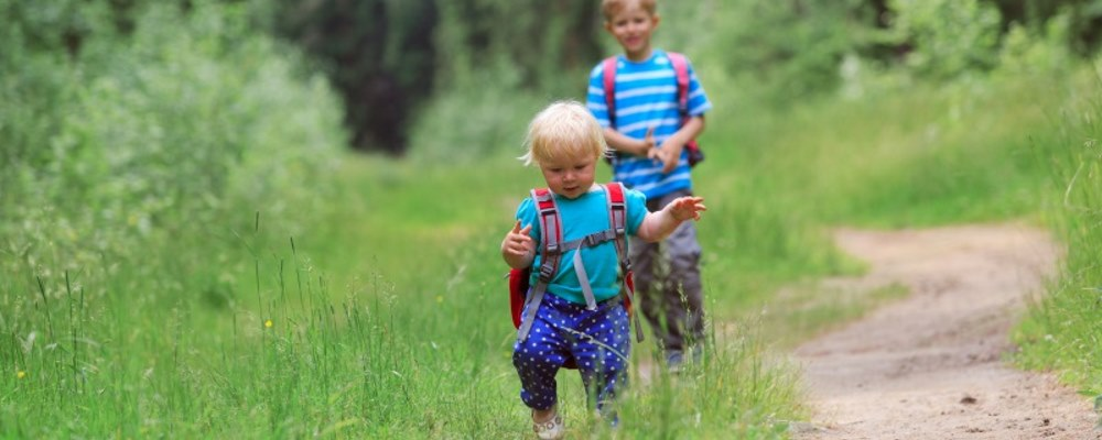 children walking on a trail in the woods