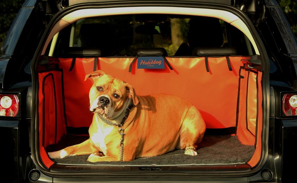 kofferbak beschermhoes met hond en hatchbed mat