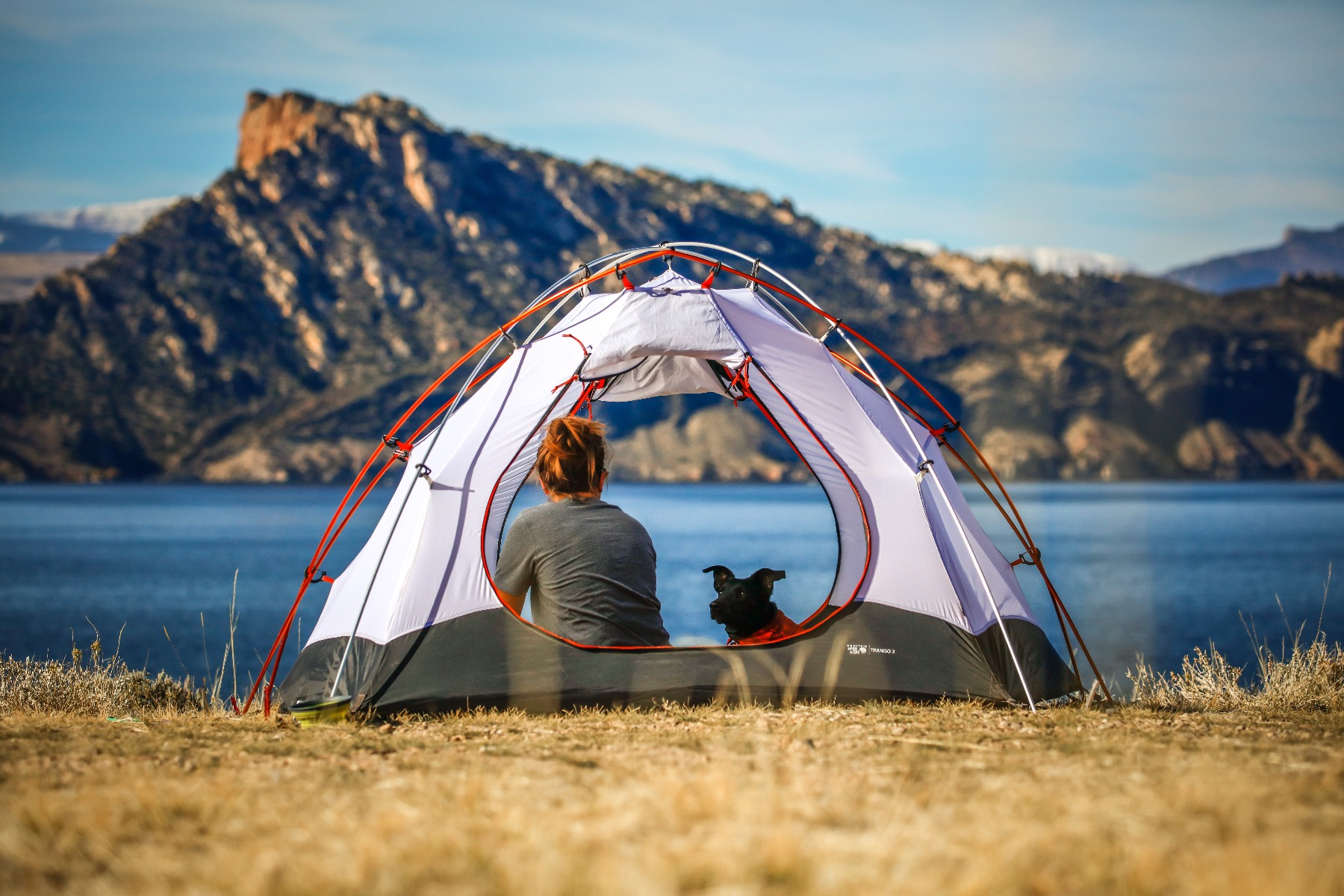 Dog and dog owner camping near a lake